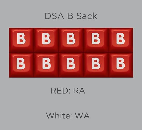 DSA B Sackk